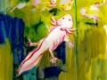 Axolotl, sketches 2