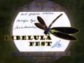 Libélula animation festival